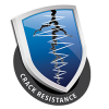 REVITALCOLOR crack resistance